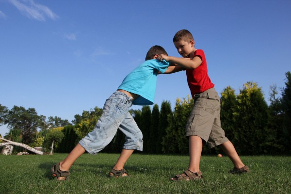 siblings_fighting-600x400